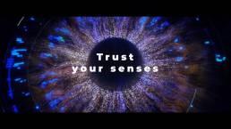 Sensory Hub | Branded video